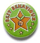 Best Behaviour School Badge